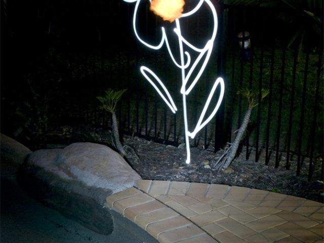 Lightpainting Angry Fire-Breathing Flower