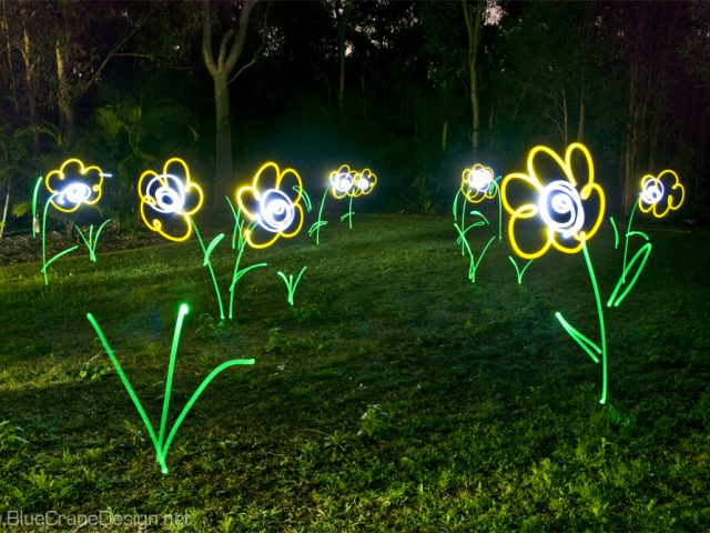 Lightpainting Garden In Color